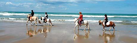 Riders on the beach of Wissant